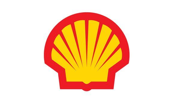 Shell Pecten 2c